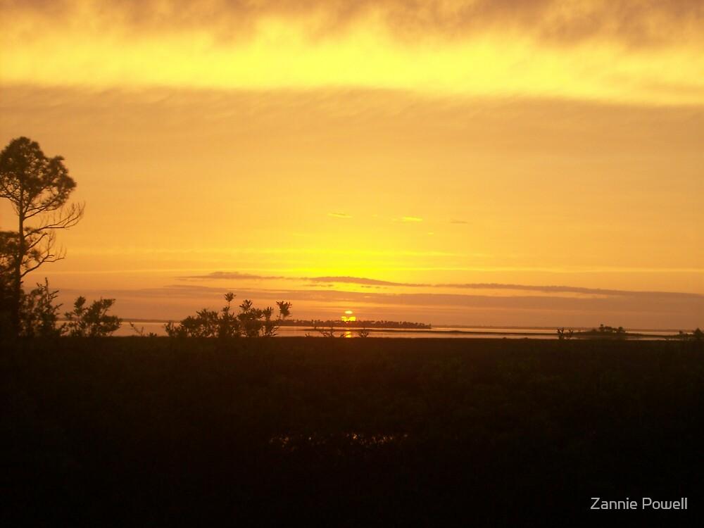 Orange Sunset  by Zannie Powell