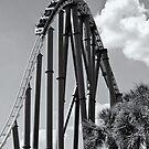 Thrill Ride by Sandra Moore