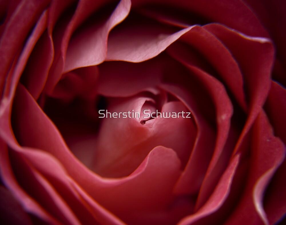 Silk by Sherstin Schwartz