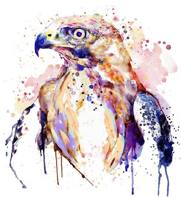 Bird of Prey  by Marian  Voicu