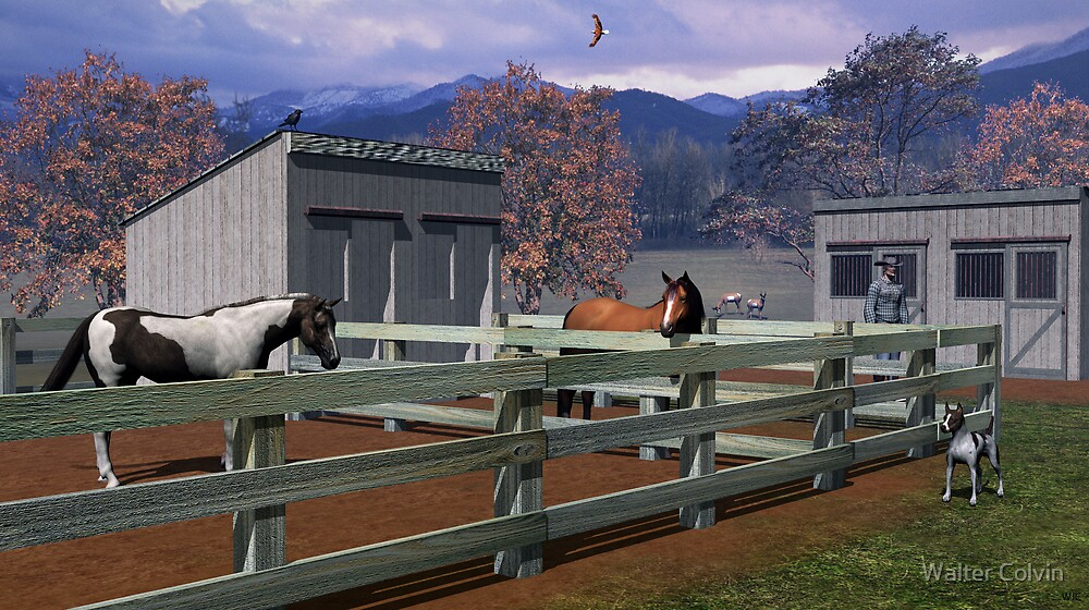 The Horse Corral by Walter Colvin