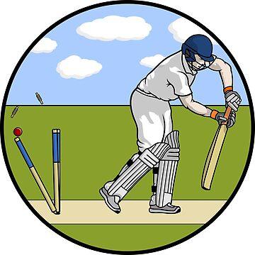Clean Bowled Batsman by zaknafien