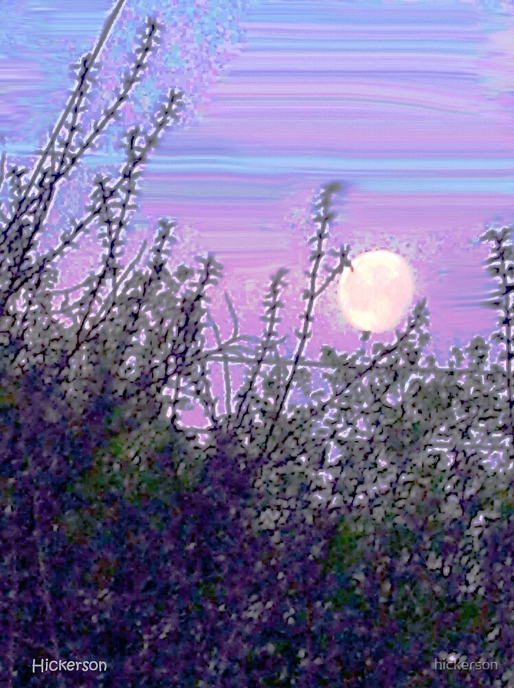 Morning Moon by hickerson