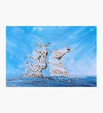 K2, the Water Kelpies Photographic Print