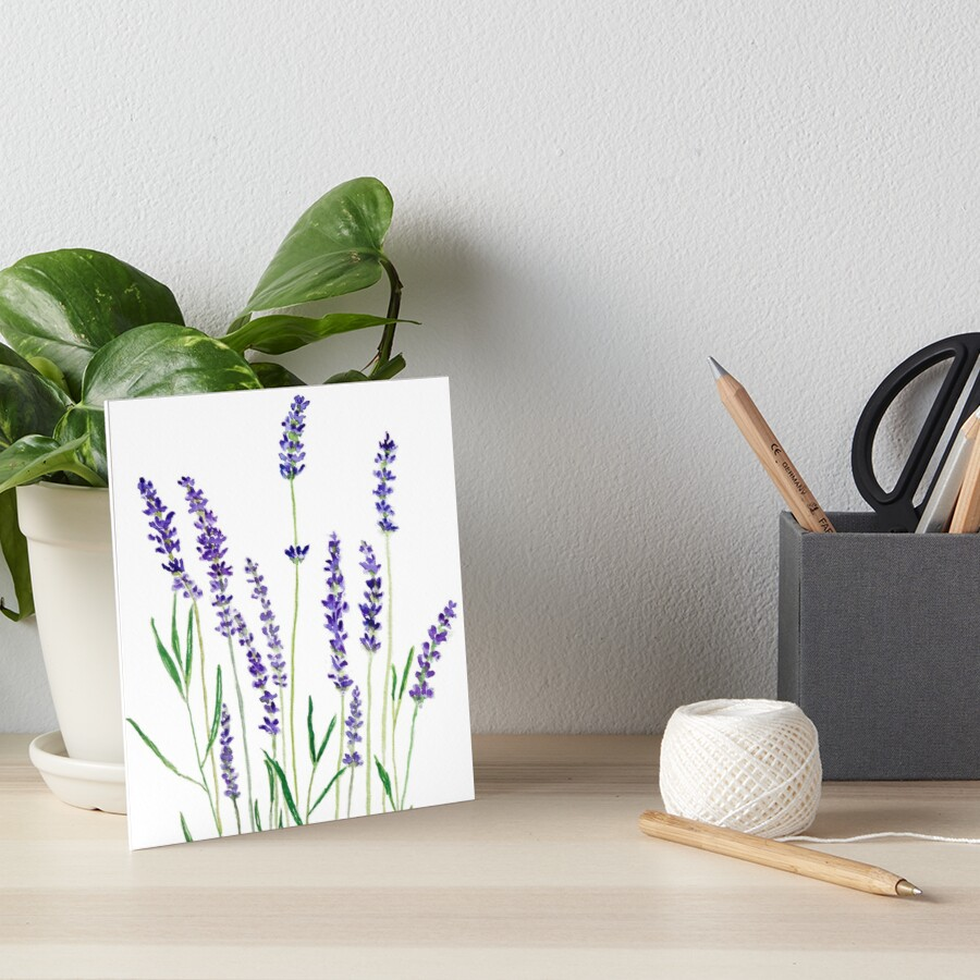 purple lavender  Art Board Print
