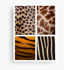 Textures of the Wild Canvas Print
