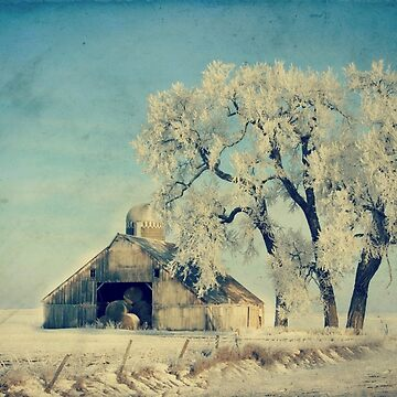 Frosty Day by BarnArtandMore