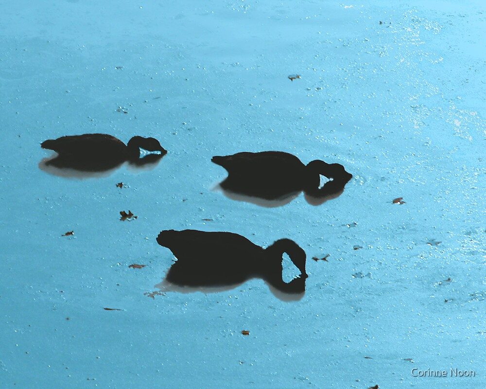 Duck Siloette 2 by Corinne Noon