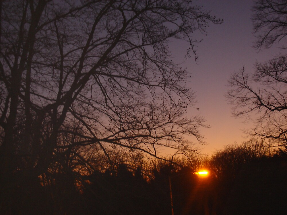 Sunset by Ammaarah