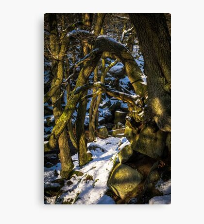 Padley Gorge Winter Canvas Print