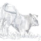 Calf Drawing by MikeJory
