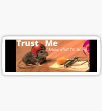Trust Me (I know what I'm doing) Sticker