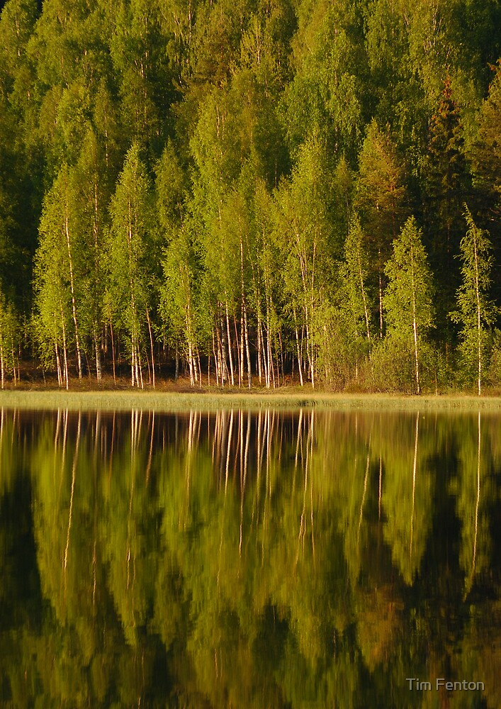 Udden Reflections 2 by Tim Fenton