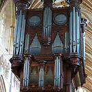 Voice of Thunder - Exeter Cathedral Organ Pipes von BlueMoonRose