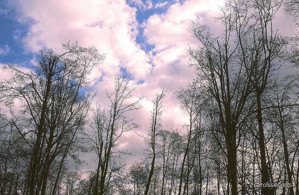 In the Clouds by carolssecrets