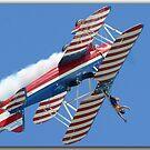 Wingwalker by ScottH711