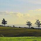 Shadowlands by Fara