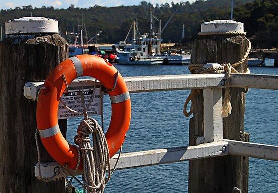 Rescue Device-Lifesaver by Evita