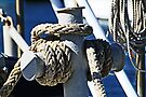 Ropes by Evita