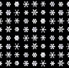 SNOWFLAKES by Rob Price