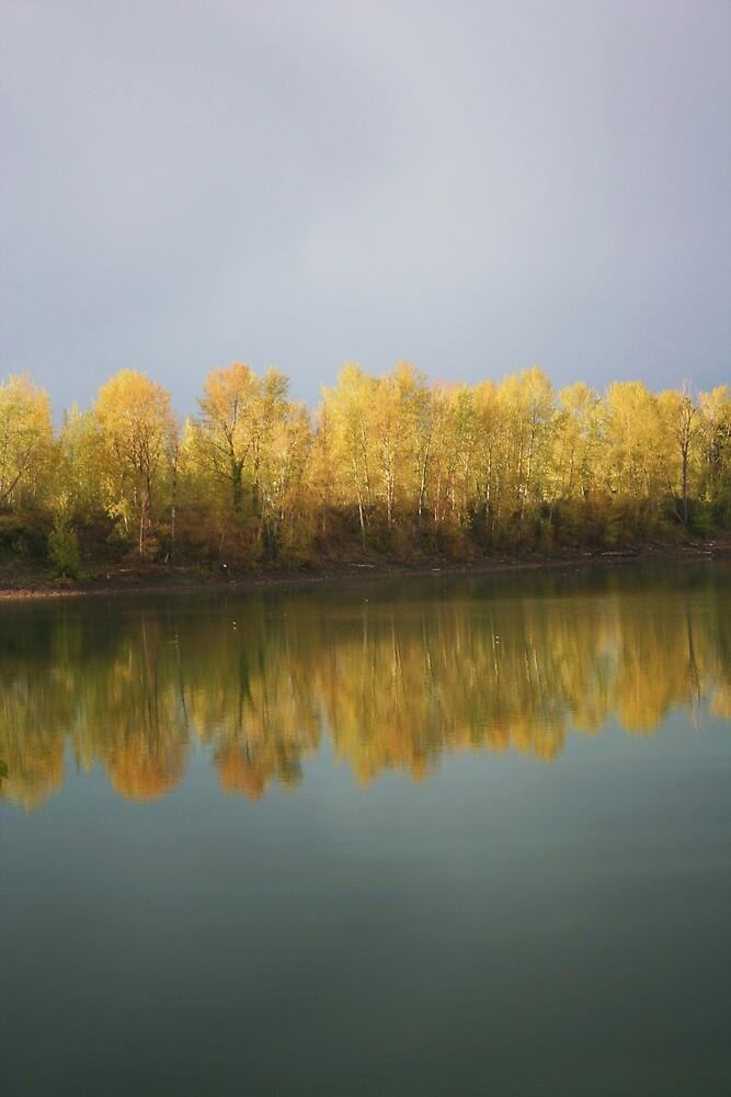 Reflections2 by heatherranae