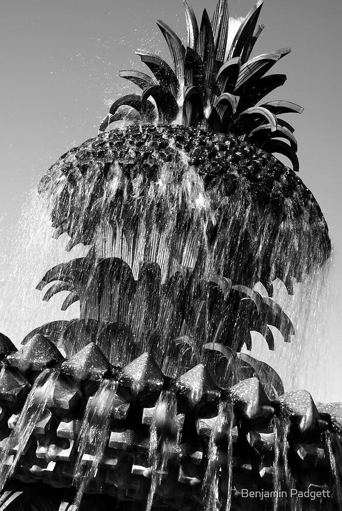 Pineapple Fountain #3, Charleston, SC by Benjamin Padgett