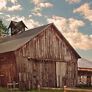 Old barn- fluffy Clouds by Diane  Marie Kramer