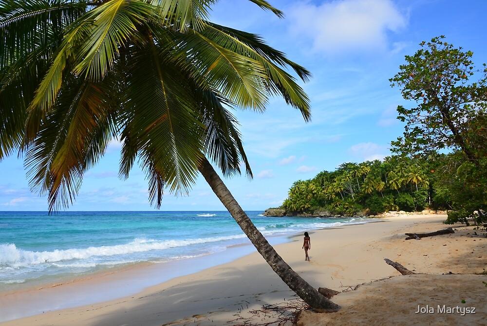 The Beach (Dominican Republic) by Jola Martysz