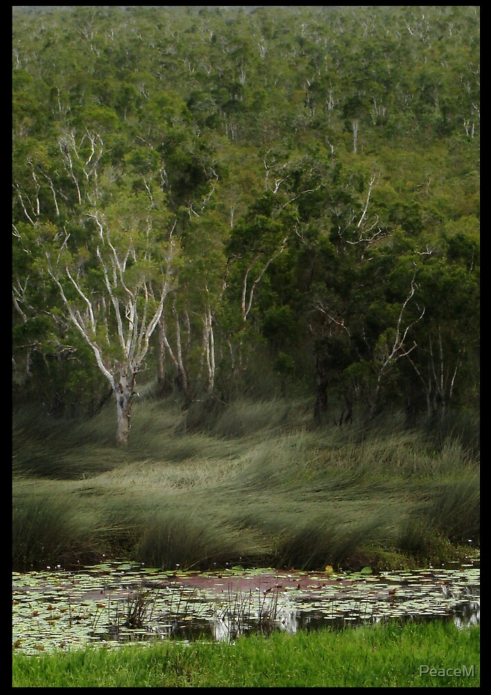 wetlands landscape by PeaceM
