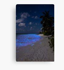 Fluorescent plankton in the Maldives - Indian Ocean Canvas Print