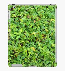 Texture of plants iPad Case/Skin