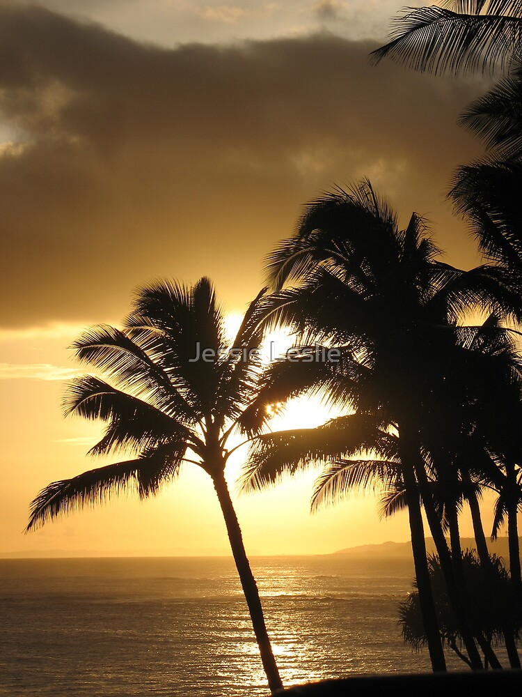 Hawaii Sunset by Jessie Leslie