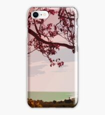 Springtime View iPhone Case/Skin