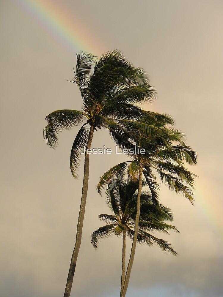 Hawaii Rainbow by Jessie Leslie