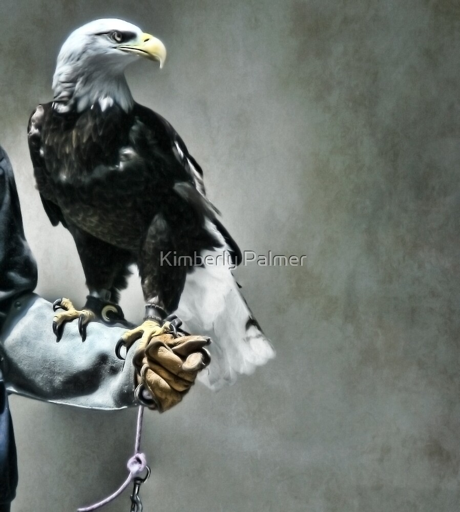 Proud Eagle by Kimberly Palmer