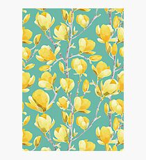 Yellow Magnolia Spring Bloom III Photographic Print