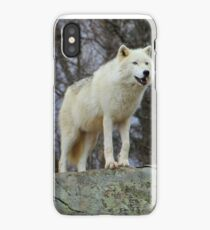 Arctic Wolf Watching iPhone Case