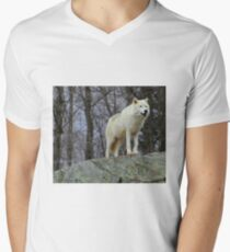 Arctic Wolf Watching Men's V-Neck T-Shirt