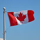HAPPY CANADA DAY by AnnDixon