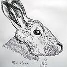 Mr Hare by Nigel Mc Clements