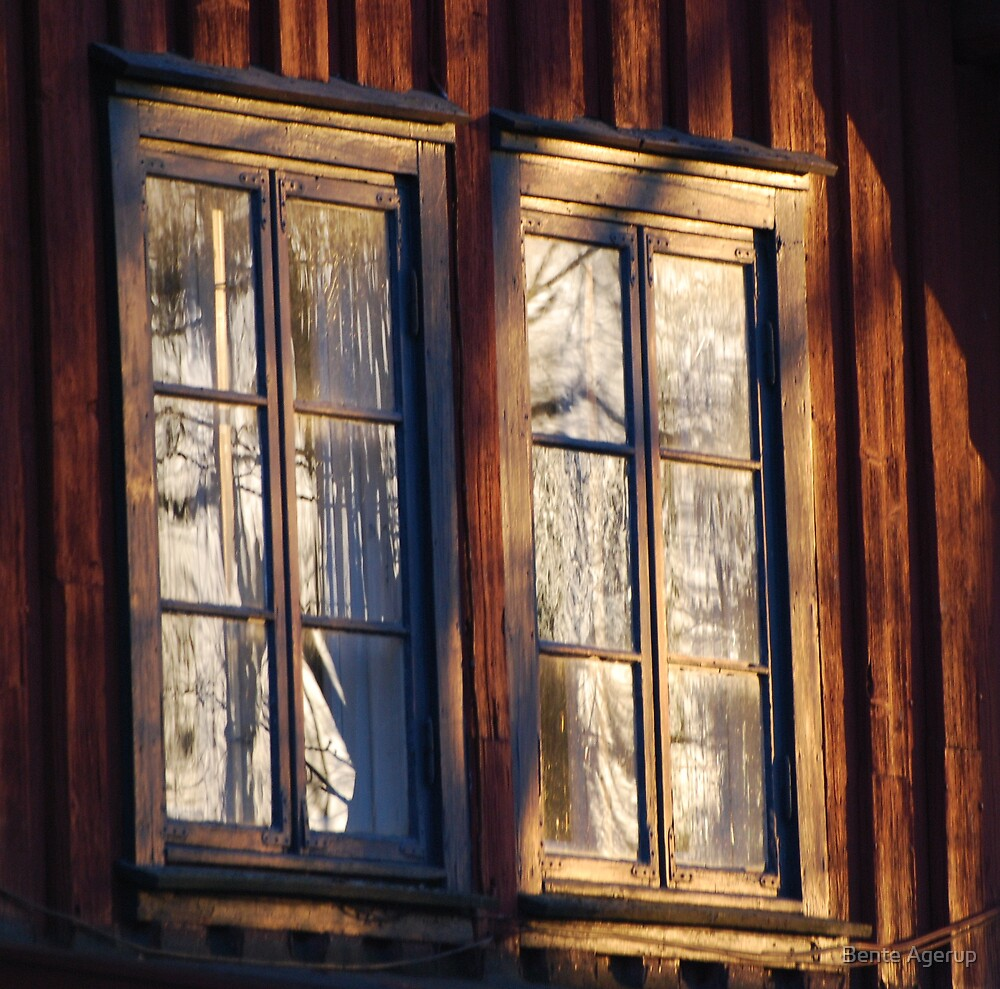 Windows by Bente Agerup