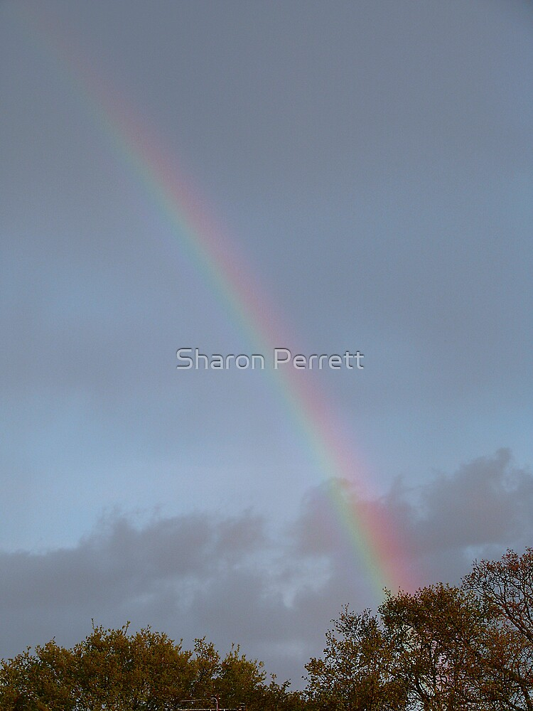 A Rainbow by Sharon Perrett