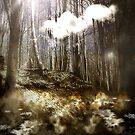 Bajo la superficie existe una vida by Daniela M. Casalla