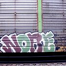 Train Graffiti by Valeria Lee