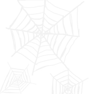 Spiderweb  by BlackSkull13