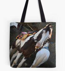 Pferd ! Tasche