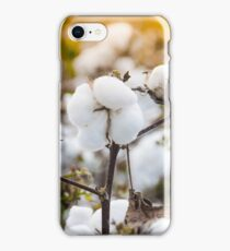 Cotton Field 4 iPhone Case/Skin