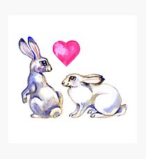 Two cute Rabbits in artistic style.  Photographic Print