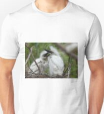 Hungry Baby Cattle Egrets T-Shirt