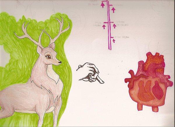 deer heart by gunstreetgirl